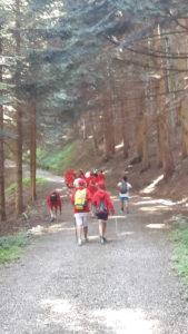 Si parte per la camminata tra il bosco